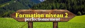 Formation Perfectionnement